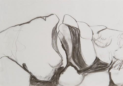 Tekeningen: naar de natuur